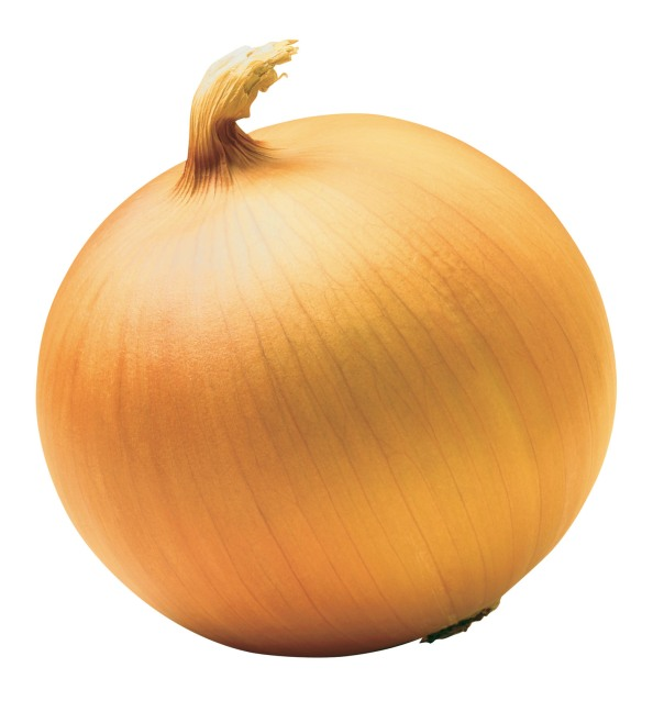 yellow_onion1